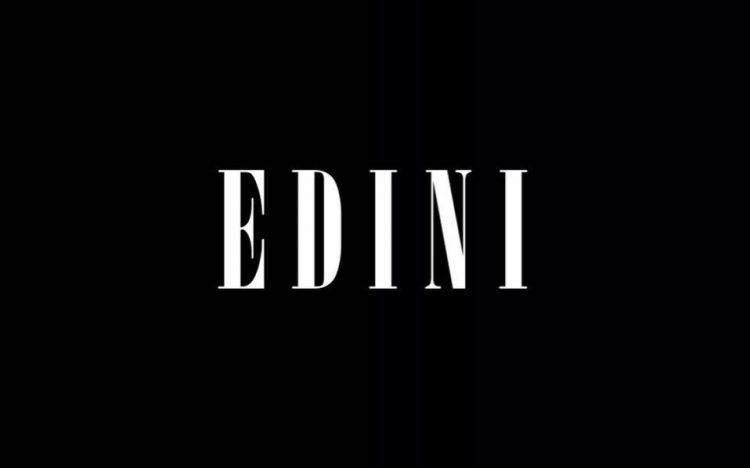 EDINI